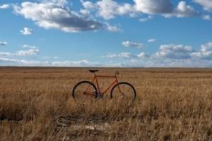bikeinfield